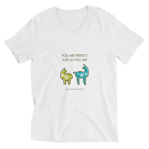 You Are Perfect - Unisex Short Sleeve V-Neck T-Shirt