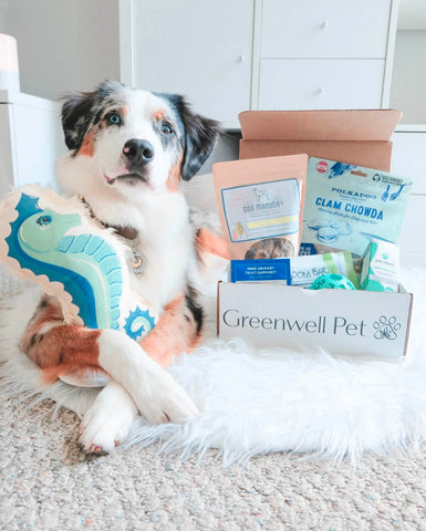 Copy of Greenwell Pet Box