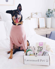 Greenwell Pet Box