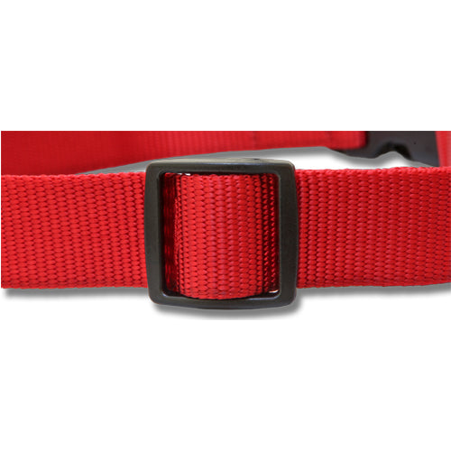 Double Ring Nylon Dog Collar - Premium