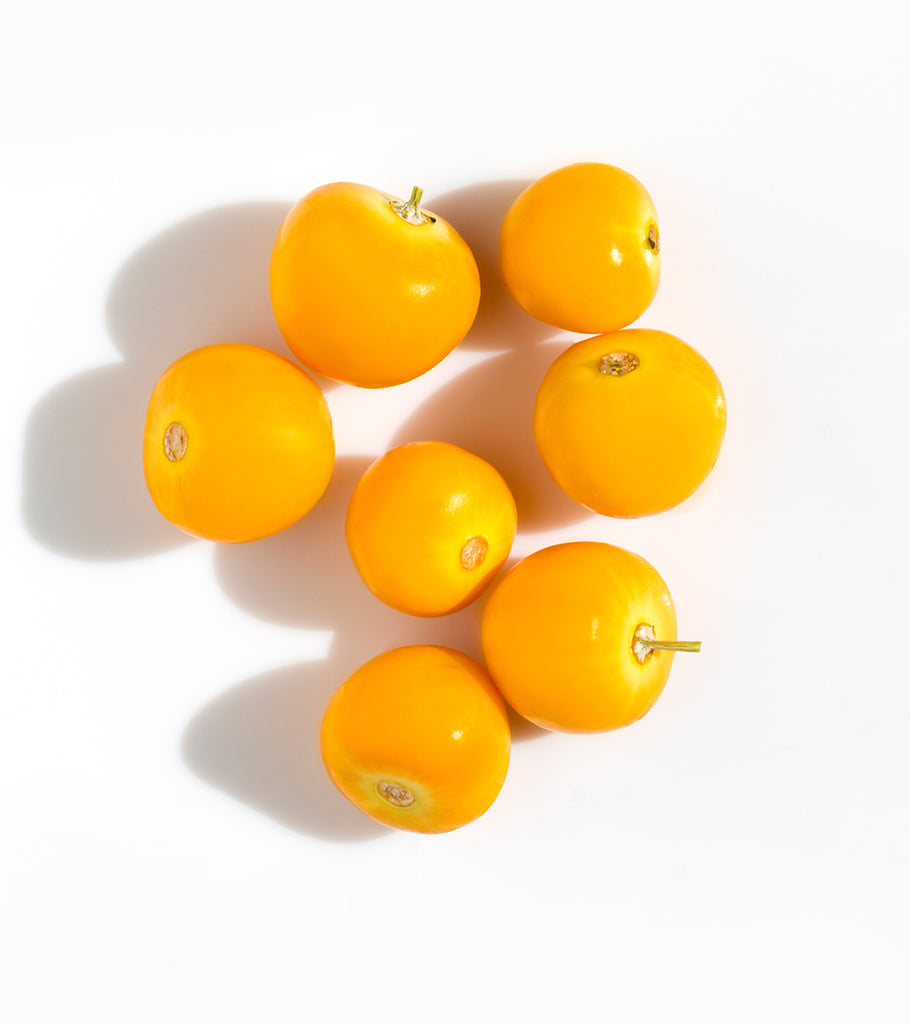 FEKKAI Mirabelle Plum ingredient that protects hair color