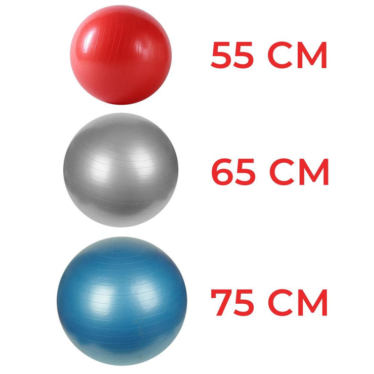 Anti-Burst Gym Ball w/ Pump - 55cm - 75cm - Sunny Health and Fitness