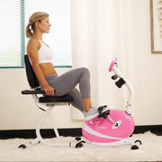 Magnetic Recumbent Bike Exercise Bike, 220lb Capacity, Monitor, Pulse Rate Monitoring