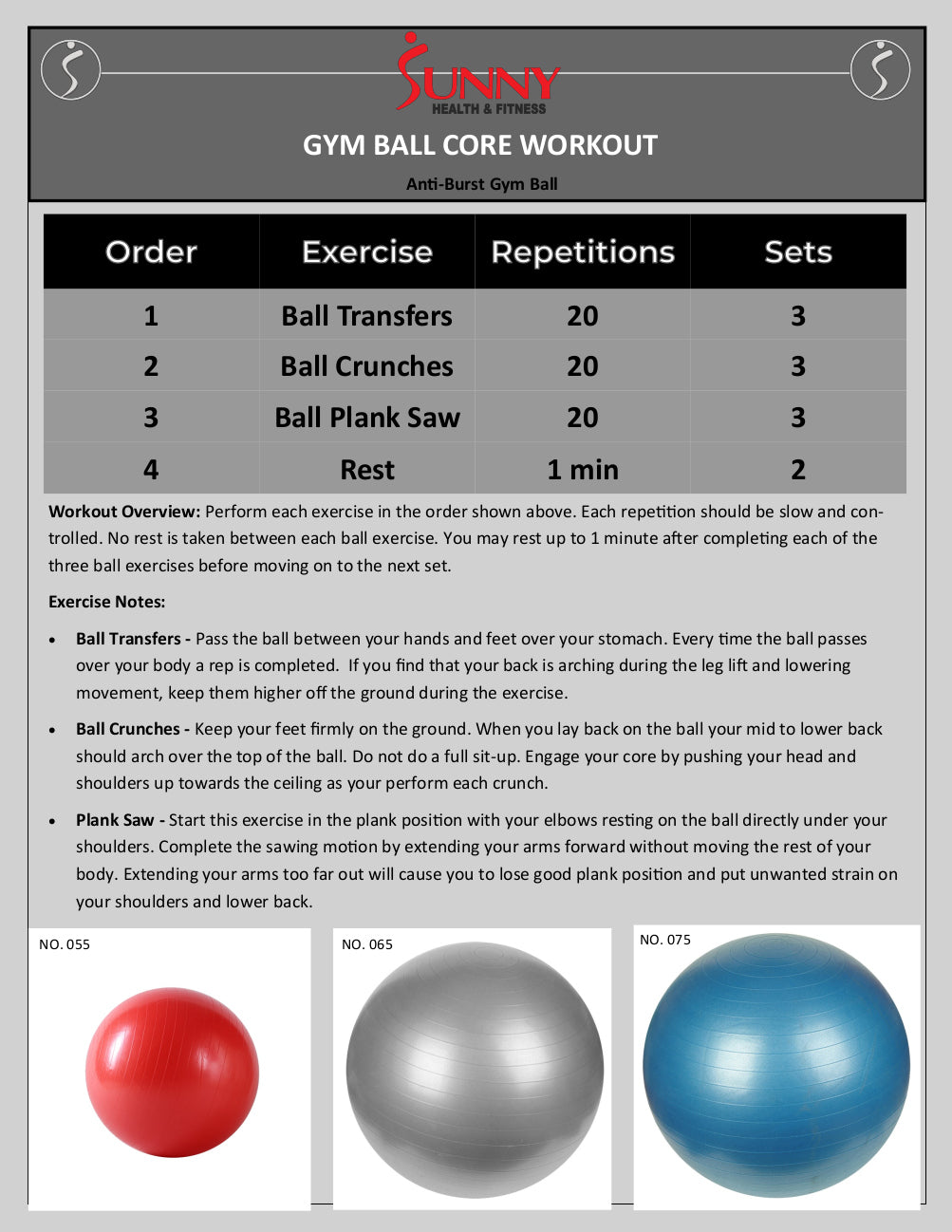 gym ball core workout program chart