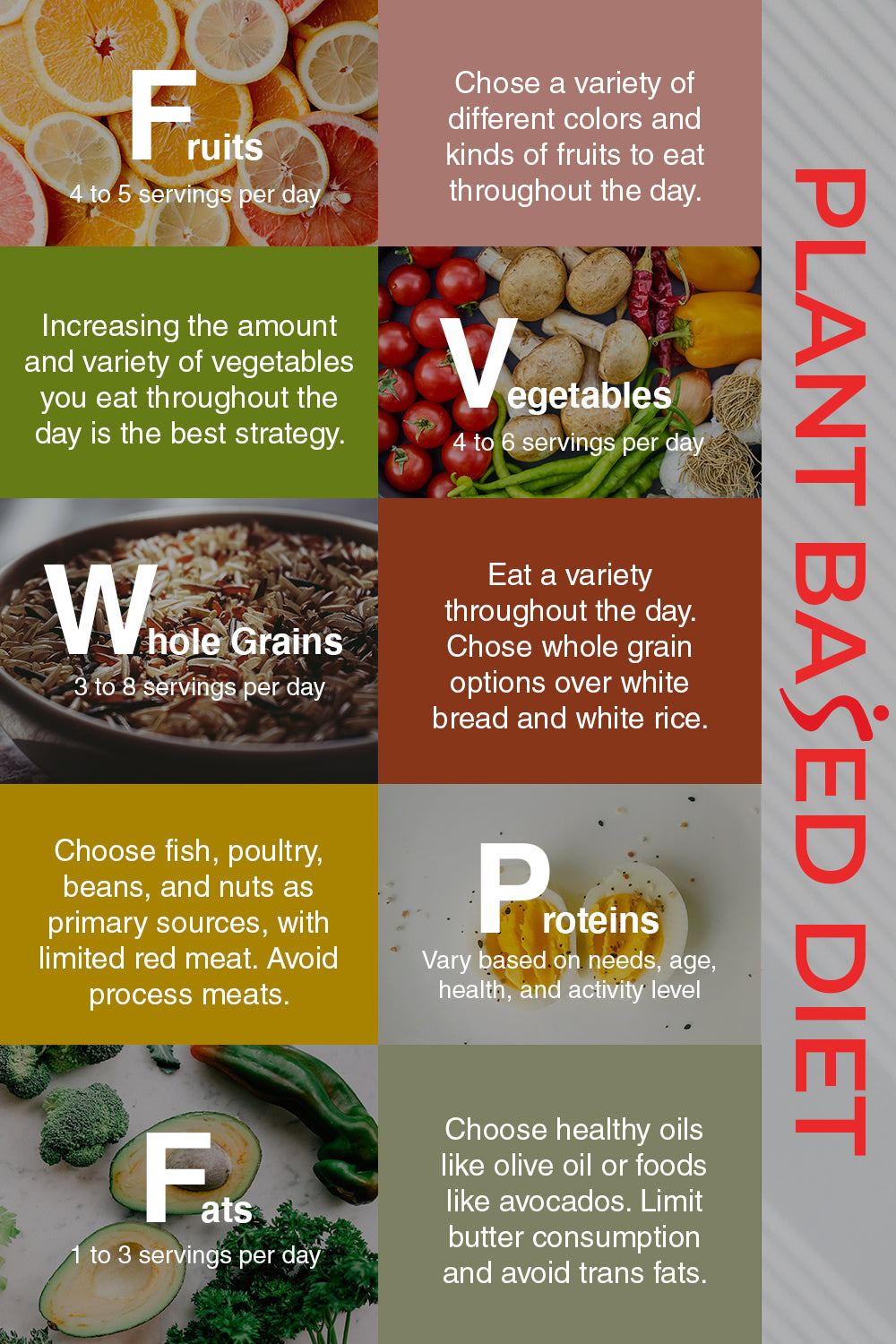 infographic for plant based diet