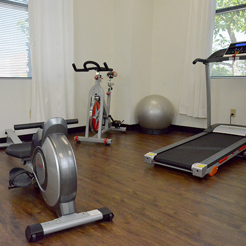 home gym with rower, bike, treadmill, and exercise ball