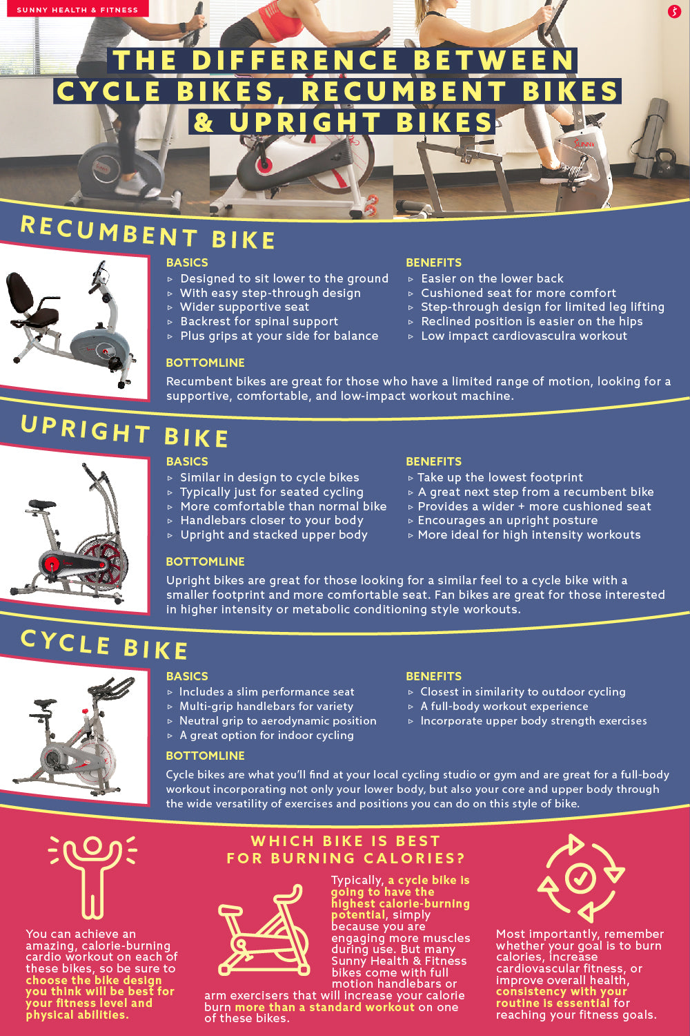 The Difference Between Cycle Bikes, Recumbent Bikes & Upright Bikes Infographic
