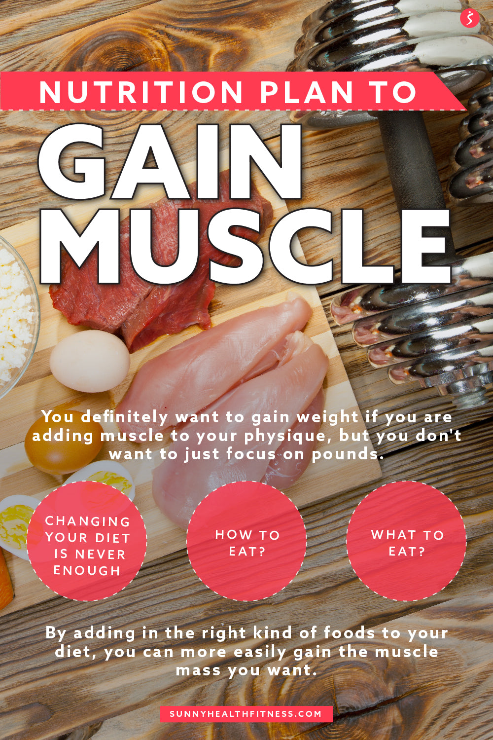 Nutrition Plan to Gain Muscle Infographic