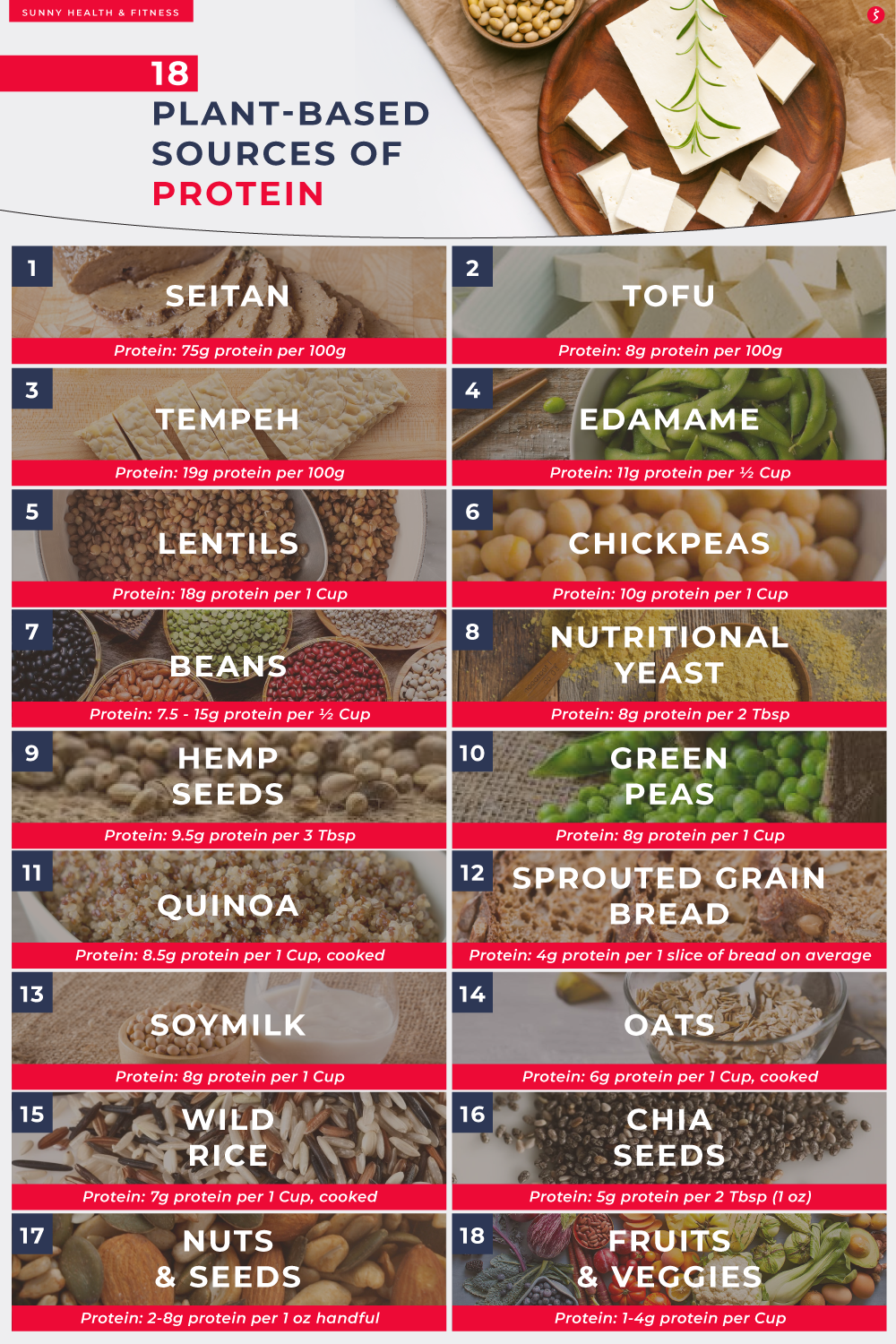 18 Plant-based Sources of Protein Infographic