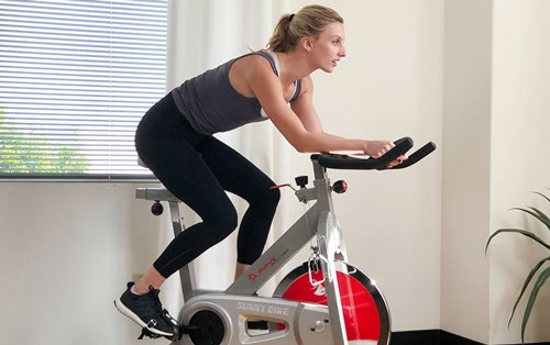 Sunny in-house trainer Sydney is cycling
