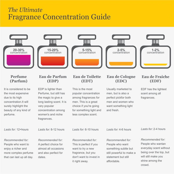 Concentration Guide
