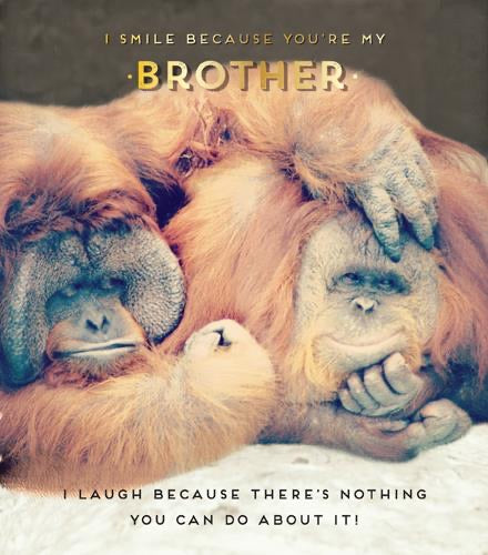 HD717B - Monkey I Smile Because You're My Brother Birthday Card