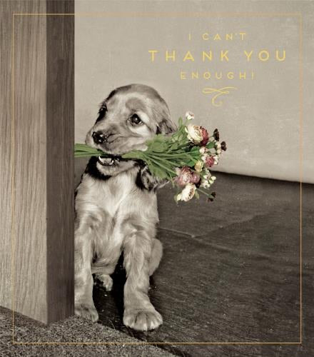 HD733B - Puppy I Can't Thank You Enough Card