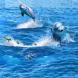 Creative Jumping Dolphin Wallpaper