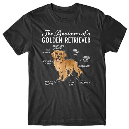 anatomy-of-golden-retriever-t-shirt
