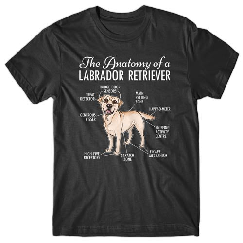 anatomy-of-labrador-retriever-tshirt
