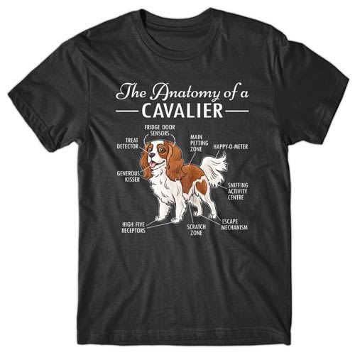 anatomy-of-cavalier-t-shirt