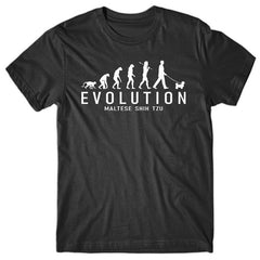 novelty-t-shirt-evolution-of-maltese
