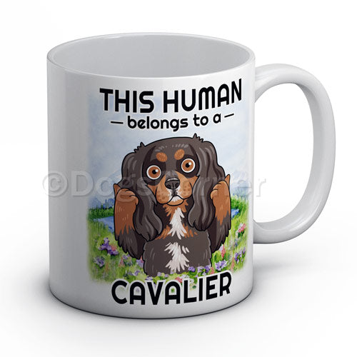this-human-belongs-to-cavalier-mug