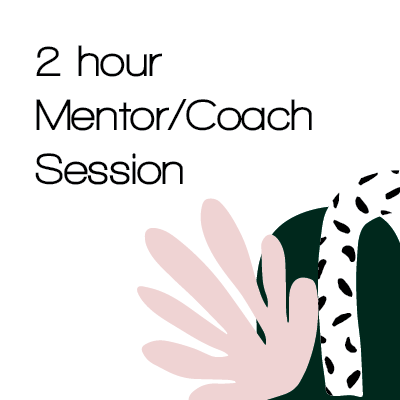 2 hour Mentor/Coaching session