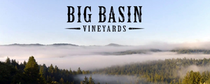 Big Basin winery crushes it. Literally and figuratively.