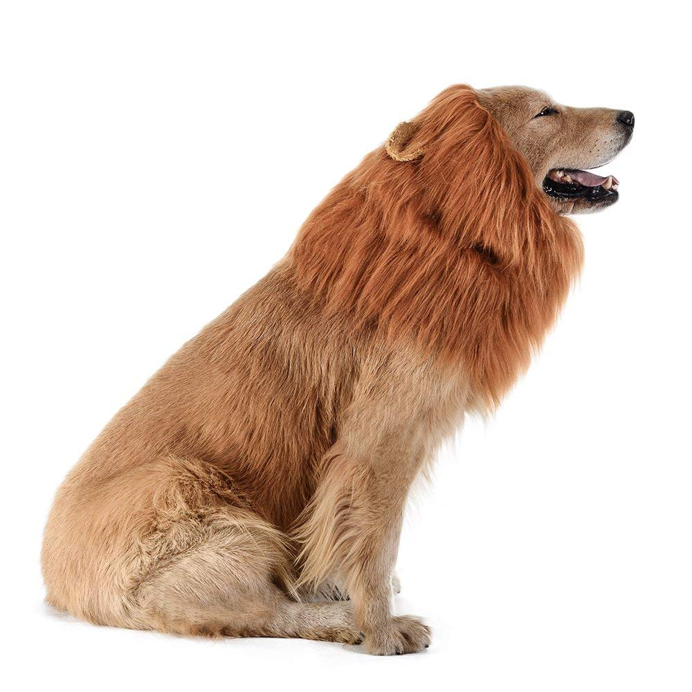 196cb6ba9 Dog Lion Mane - Realistic & Funny Lion Mane for Dogs - Complementary Lion  Mane for