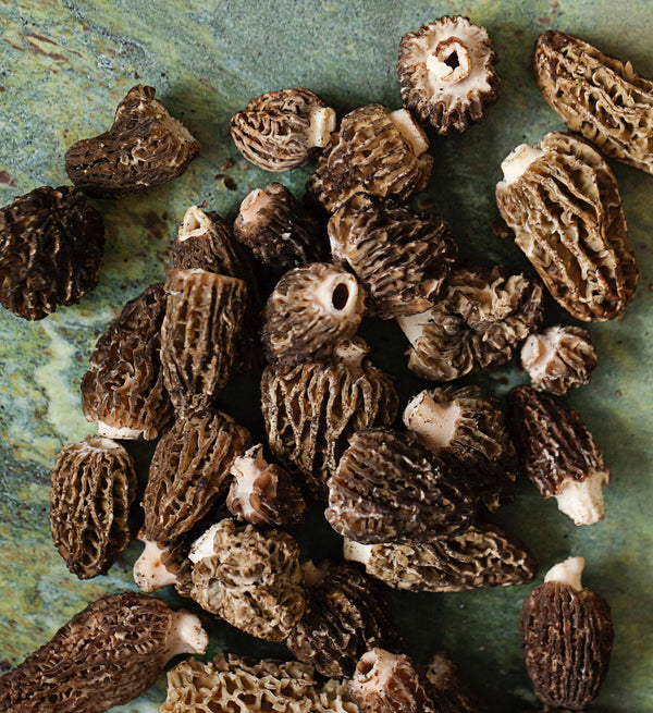 Foraged Morel Mushrooms