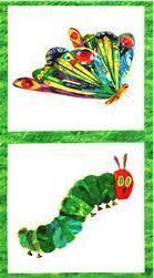 The Very Hungry Caterpillar - Green Border Panel (A-5280M)