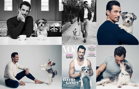 YOU Magazine April 2019 DAVID GANDY by Matt Holyoak * BRAND NEW