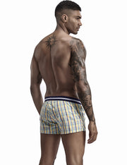 Low Rise Plaid Trunk Shorts 90504