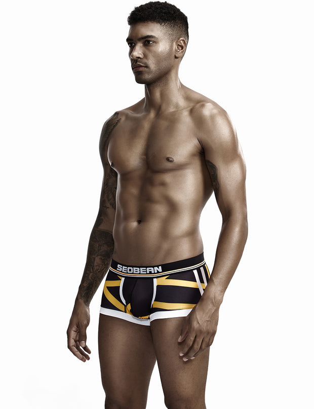 Low Rise Sexy Stripe Boxer Brief 90224