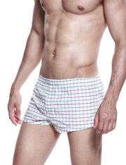 Low Rise Plaid Trunk Shorts 40505