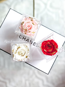 Box Rose d'or