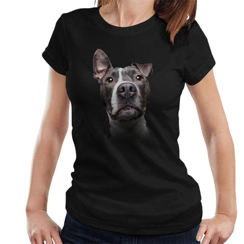 Amstaff - American Staffordshire Terrier Ladies T-Shirt