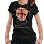 Pit Bull Definition Ladies T-Shirt