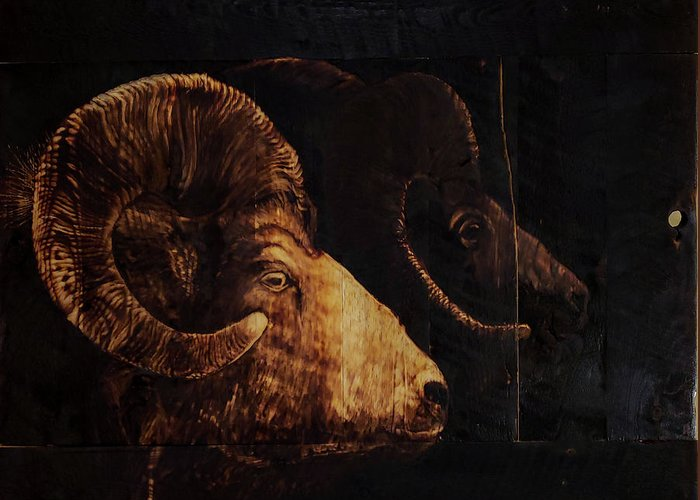 Bighorn Penumbra Greeting Cards