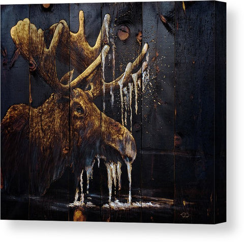 Moonlit Moose: CANVAS PRINTS