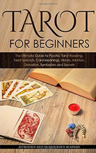 Tarot For Beginners - The Pearl of Door County
