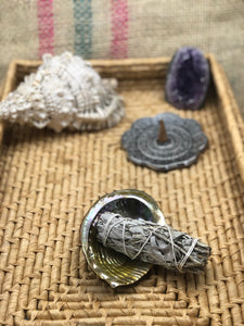 White Sage Smudge (3-4 inch) - The Pearl of Door County
