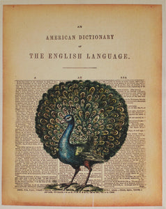 c. 1976 American Dictionary of the English Language - Golden Age Posters