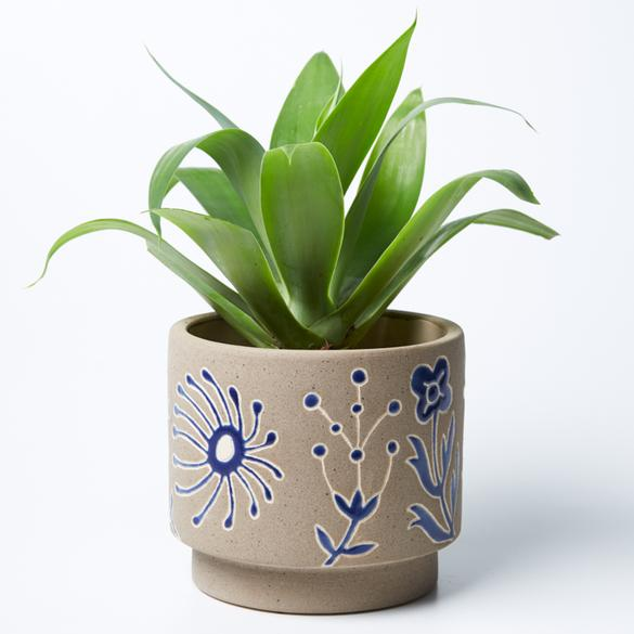 Jones & Co | Silt Kangaroo Planter