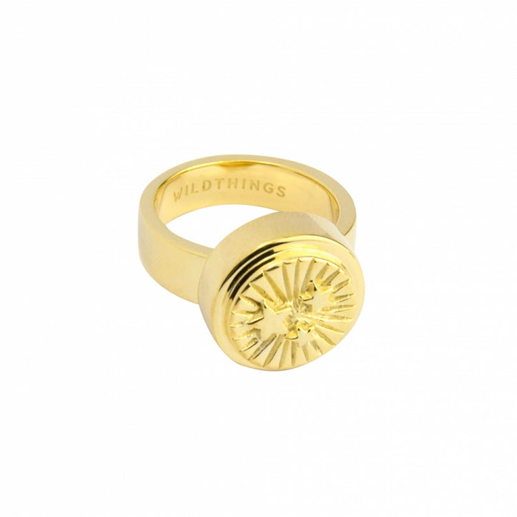 WILDTHINGS STAR PINKY RING