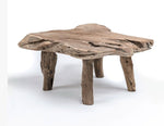 GOMMAIRE COFFEE TABLE NATURE SHAPE
