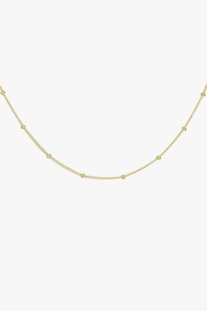WILDTHINGS STUD CHAIN GOLD (45cm & 55cm)
