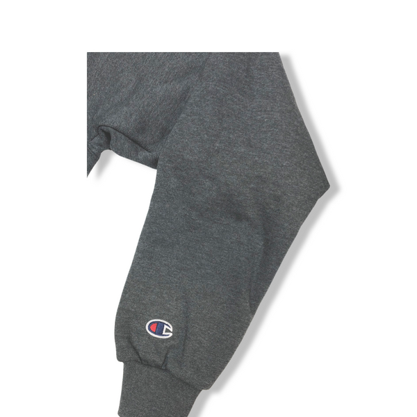 Champion Authentic Double Dry Action Fleece Pullover Hood Charcoal Heather (BROOKLYN 718)