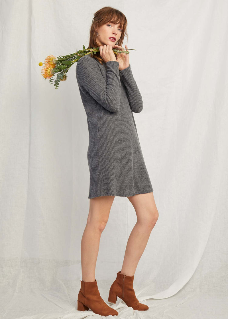 Incognito Turtleneck Dress