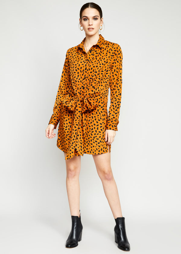 Samantha Shirt Dress