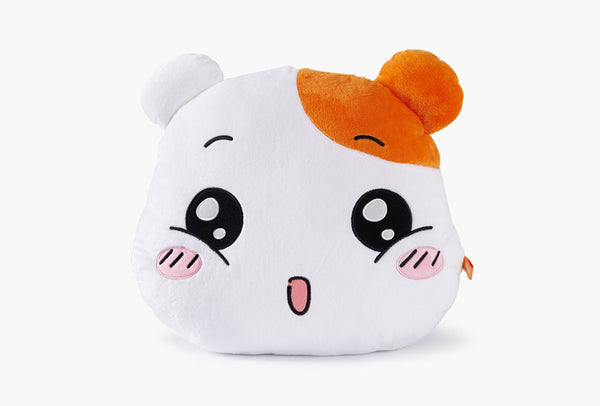 EBICHU FACE CUSHION