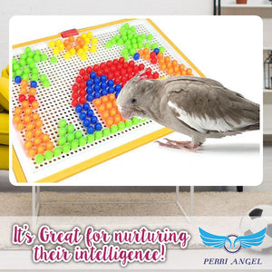 BirdBrained! - Parrot IQ Training Puzzle