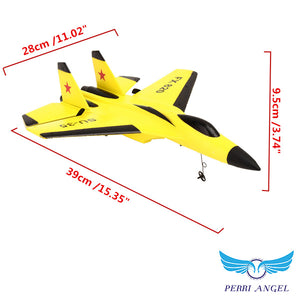 High Torque Aerobatic Gliding RC Airplane